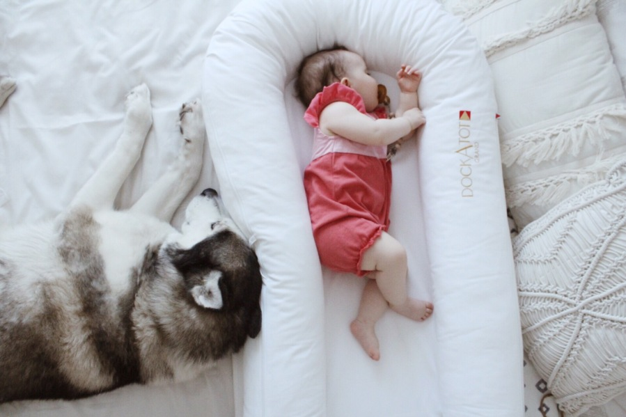 Sleeping Lessons